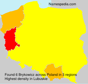 Surname Brykowicz in Poland