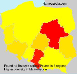 Brzezek