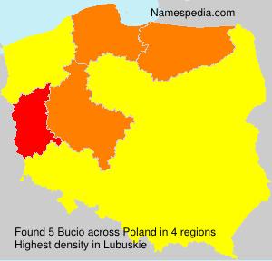 Surname Bucio in Poland