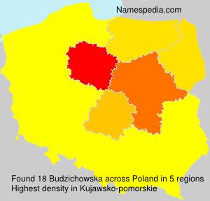 Familiennamen Budzichowska - Poland