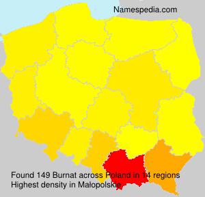 Surname Burnat in Poland