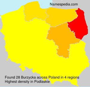 Burzycka