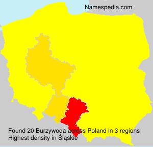 Surname Burzywoda in Poland