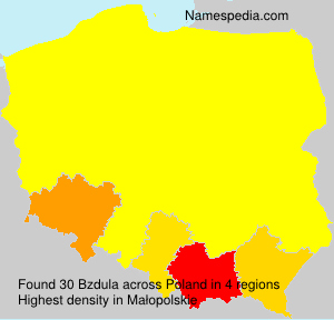 Surname Bzdula in Poland