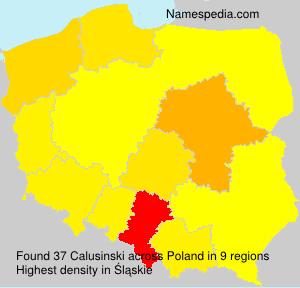 Calusinski