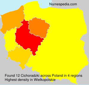 Cichoradzki