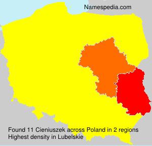 Cieniuszek