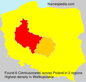 Cienkuszewski