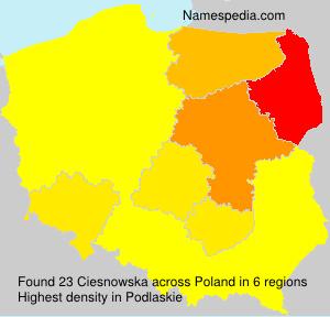 Ciesnowska