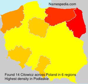 Citowicz