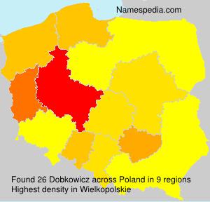 Dobkowicz