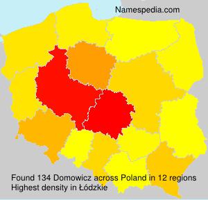 Domowicz