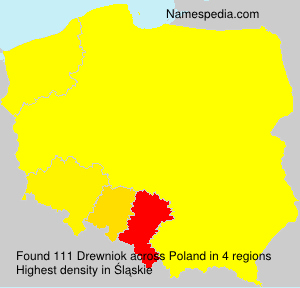 Surname Drewniok in Poland