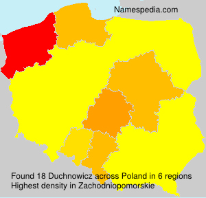 Surname Duchnowicz in Poland