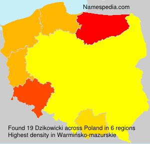 Familiennamen Dzikowicki - Poland