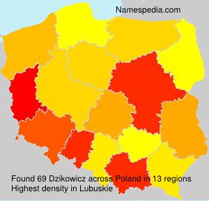 Dzikowicz