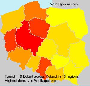Surname Eckert in Poland