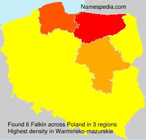 Familiennamen Falkin - Poland