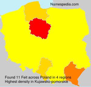 Surname Feit in Poland