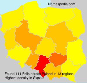 Familiennamen Felis - Poland