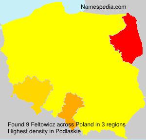 Feltowicz