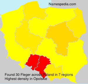 Familiennamen Fleger - Poland