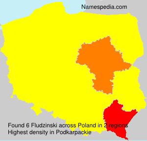 Fludzinski