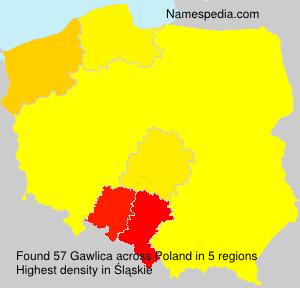 Gawlica