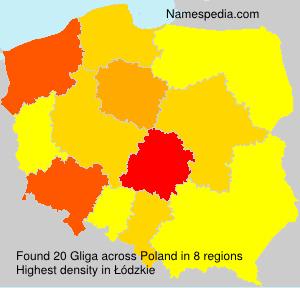 Surname Gliga in Poland