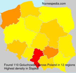 Familiennamen Goluchowski - Poland