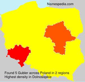 Surname Gubler in Poland