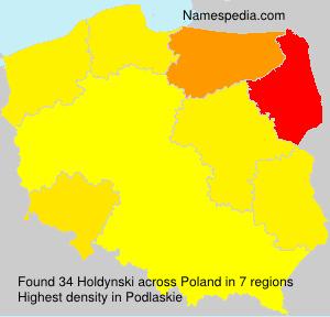 Holdynski