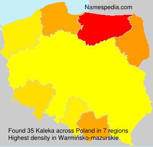 Kaleka