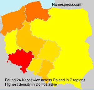 Kapcewicz