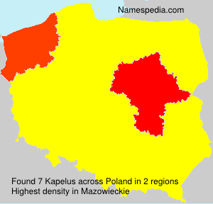 Surname Kapelus in Poland