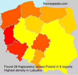 Kapszewicz