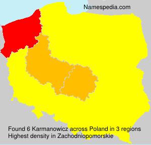 Karmanowicz