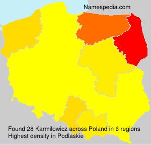 Karmilowicz