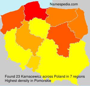 Karnacewicz