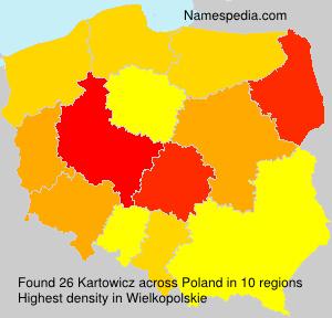 Kartowicz