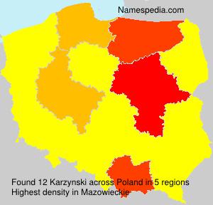 Karzynski