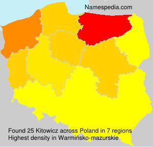 Surname Kitowicz in Poland