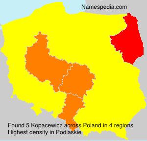 Kopacewicz
