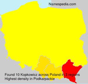 Kopkowicz