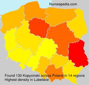 Kopycinski