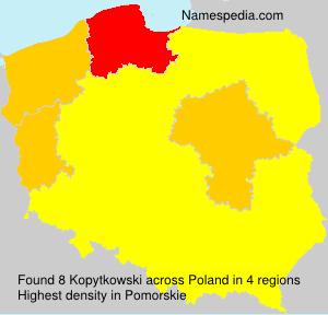 Kopytkowski