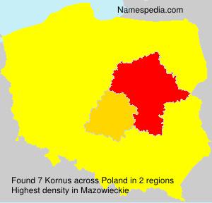 Kornus