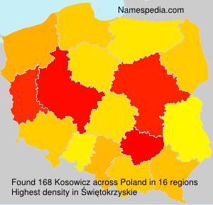 Kosowicz