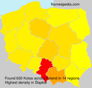 Surname Kotas in Poland
