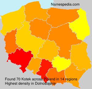Familiennamen Kotek - Poland